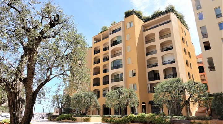 Mantegna 1 bedroom apartment for rent